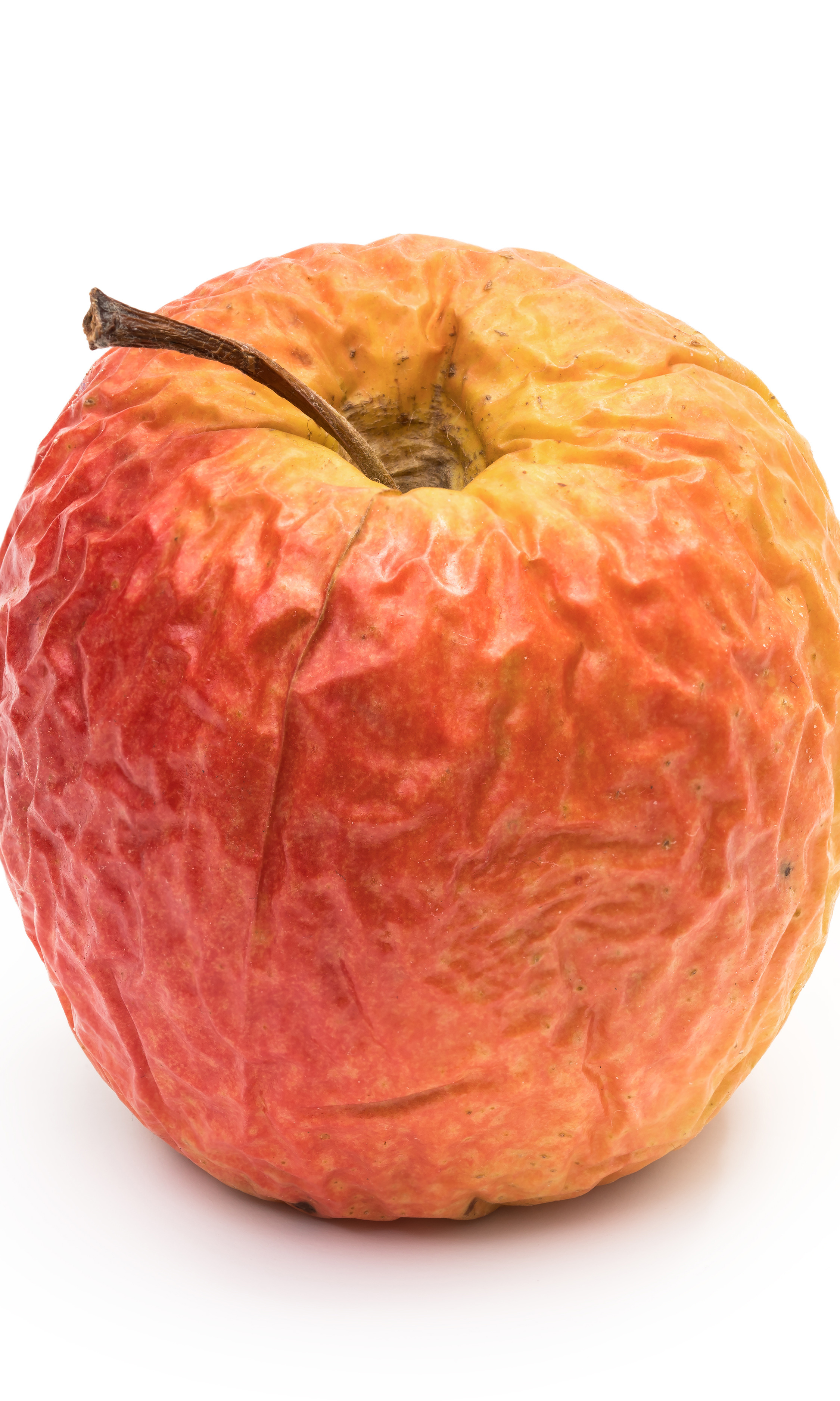 Don't Let One Bad Apple Spoil the Bunch: Dealing with Difficult Employees