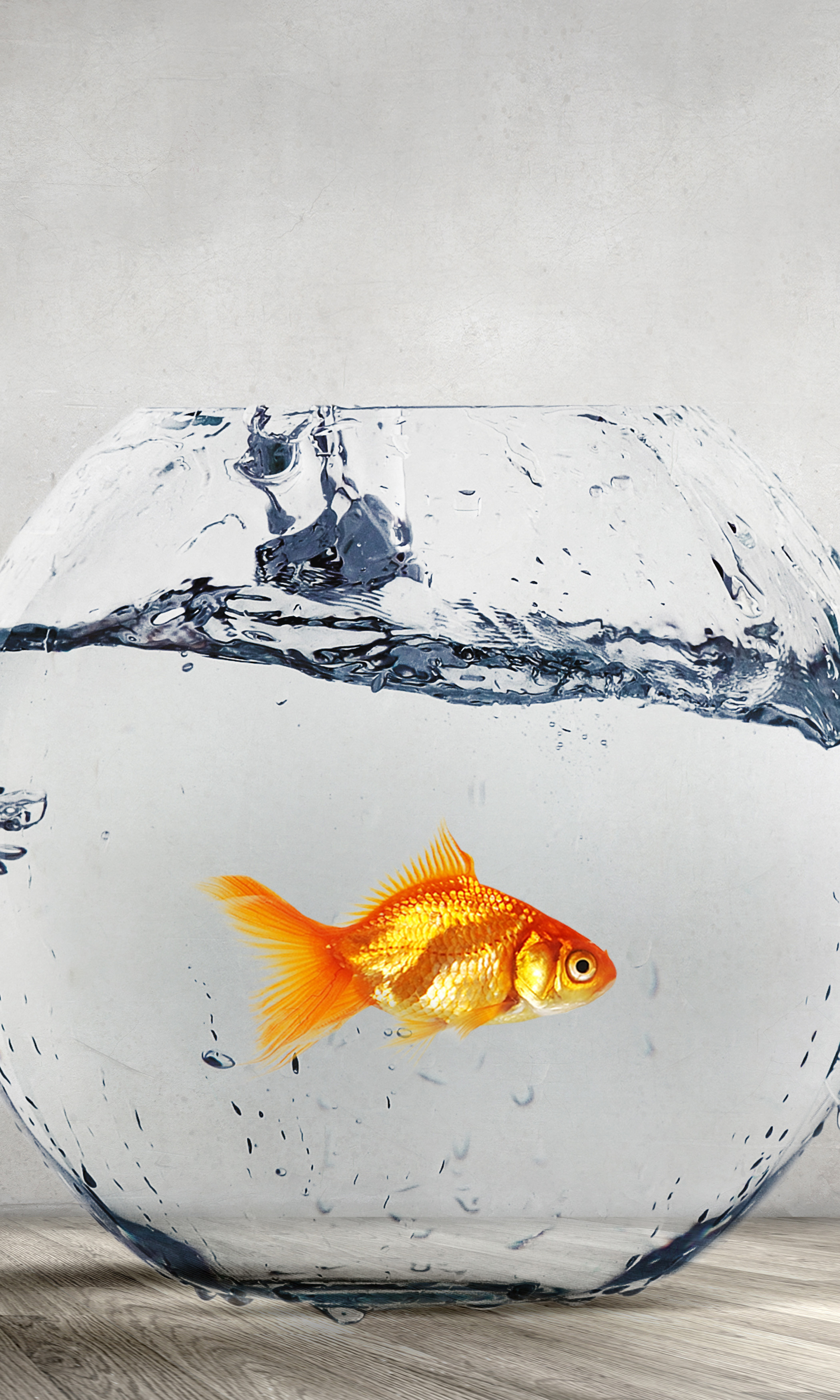 Working in a Fishbowl: Practical Challenges for Public Sector Employees